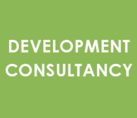 development consultancy